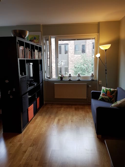 The living space is divided by a book shelf.  The sofa folds out into a double bed.