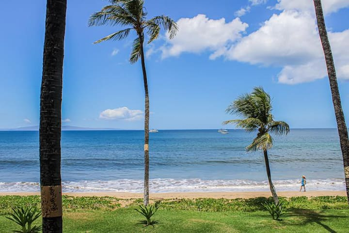Sugar Beach Resort #321- 1BR Oceanfront Condo!