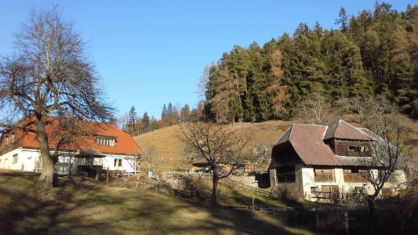 Alm, 800m Höhe. Absolute Alleinlage - Krainberg - 牧人小屋
