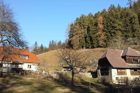 Alm, 800m Höhe. Absolute Alleinlage - Krainberg - Xalet
