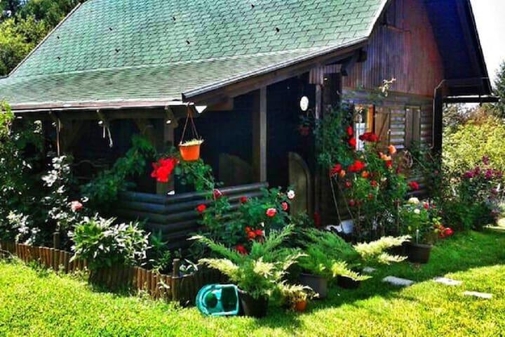 Beautiful & charming wooden house - Zlatibor