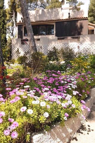Jardin arboré, terrasse, pergola, ...