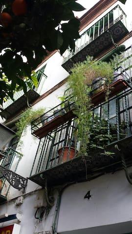 Disfruta de la mejor Sevilla - Siviglia - Bed & Breakfast