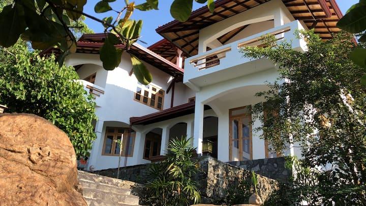 Treehouse Villas Hikkaduwa