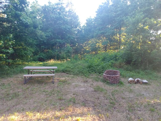 Eastern Shore Wooded Wildlife Campsite
