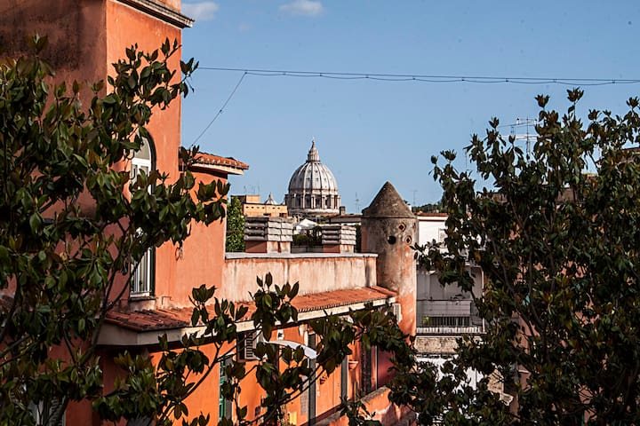 Apartment with beautiful terrace - Roma - Apartment