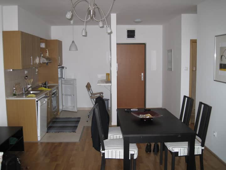 Stylish danube-front apartment with all comforts
