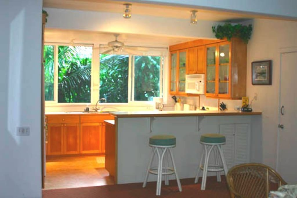Kitchen with large windows for breezes & view of Hawaiian Palms, Tropical Greenery