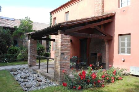 Apartments with Pool near Venice - San Martino di Venezze - Appartement