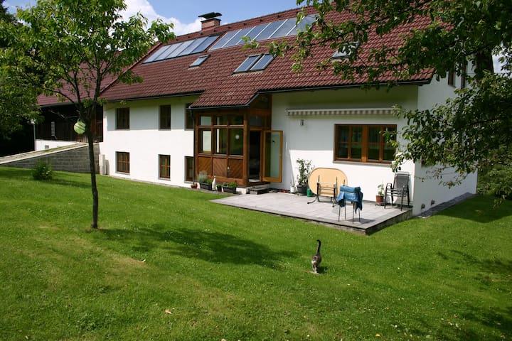 Ruhige, gemütliche Ferienwohnung  - Viehberg - Dom