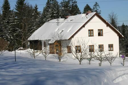 Ruhige, gemütliche Ferienwohnung  - Viehberg