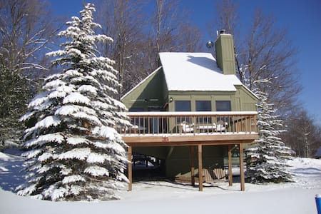 Ski Chalet Cabin Canaan Valley 35 -Dog Friendly