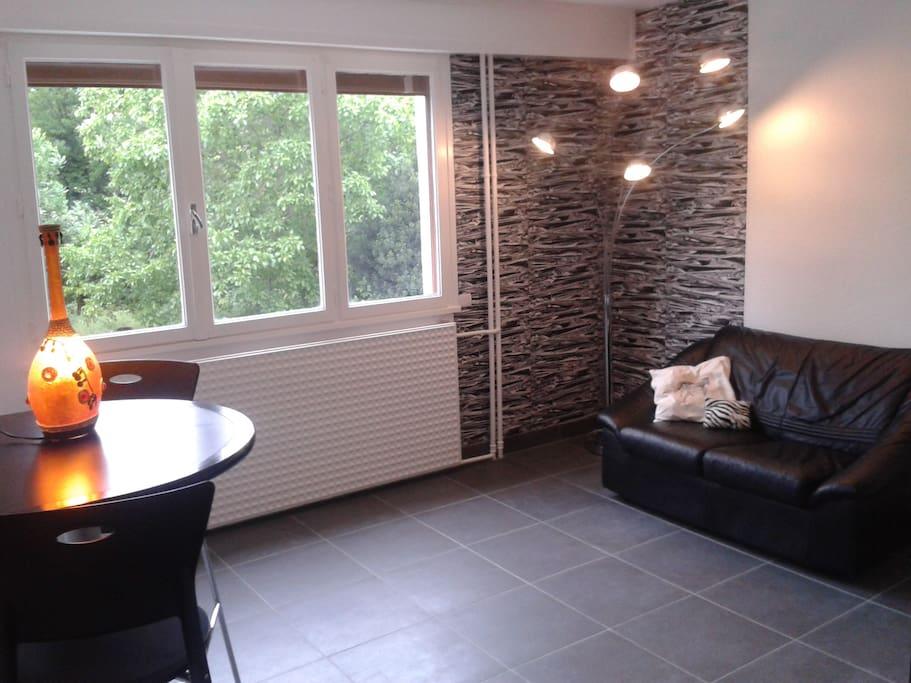 Studio neuf avec d co comptemporaine parking apartments for rent in clermont ferrand auvergne - Deco jardin avec gravier clermont ferrand ...