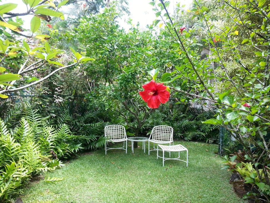Private Fenced in Yard with Tropical Garden & several sitting areas in shade or sun.  Also 2 chaise lounges for napping & 2 person outdoor hot shower as well as full bathroom with shower inside