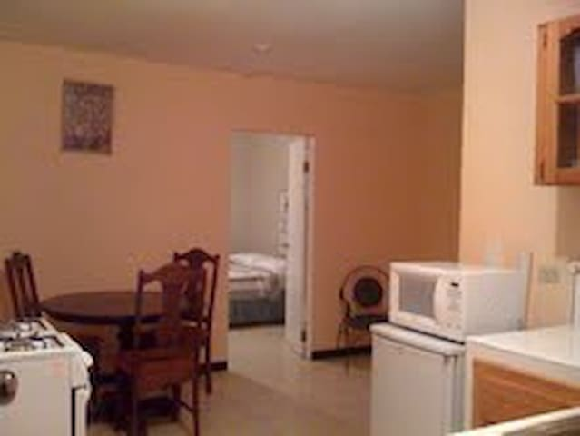 1 Bedroom Apartment in Kingston, JA - Kingston - Apartamento