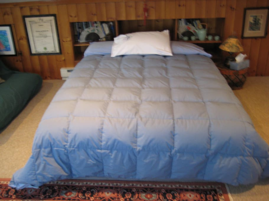 Brand new queen sized bed, enjoy the flannel sheets and down comforter!