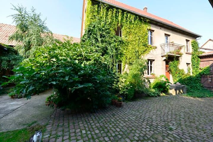 Au six, chambres d'hôte à Altorf - Altorf - Bed & Breakfast