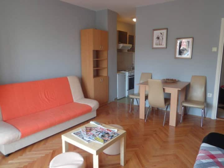 Modern apartment in the centre