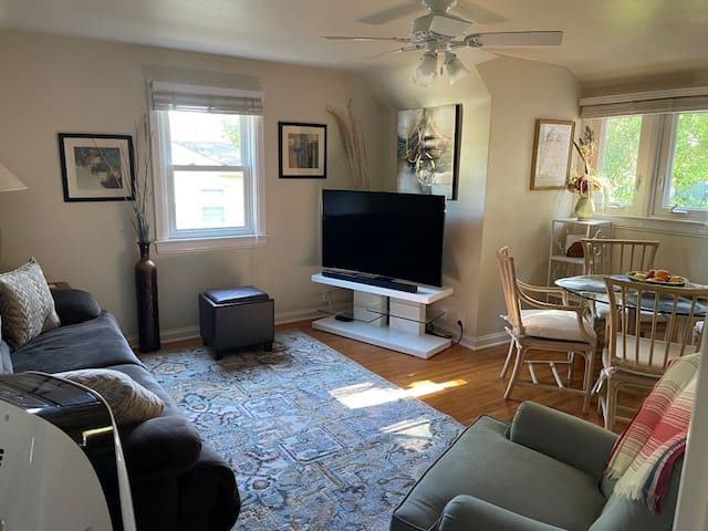 Spacious Shared Living and Dining Room