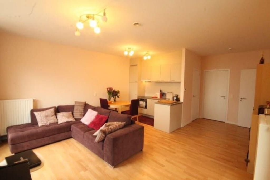 Cosy living room combined with fully equipped kitchen