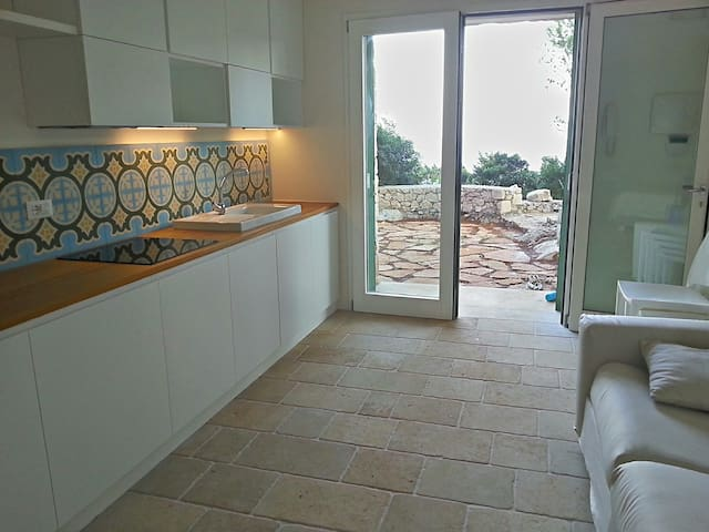 Studio Apartment: the main room with sea view terrace