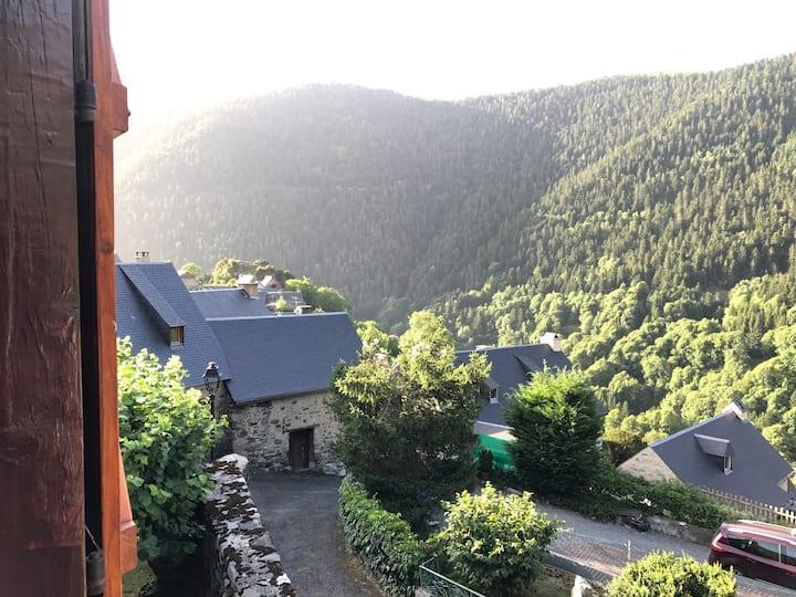 Grange authentique Pyrénéenne (AulonStLary)
