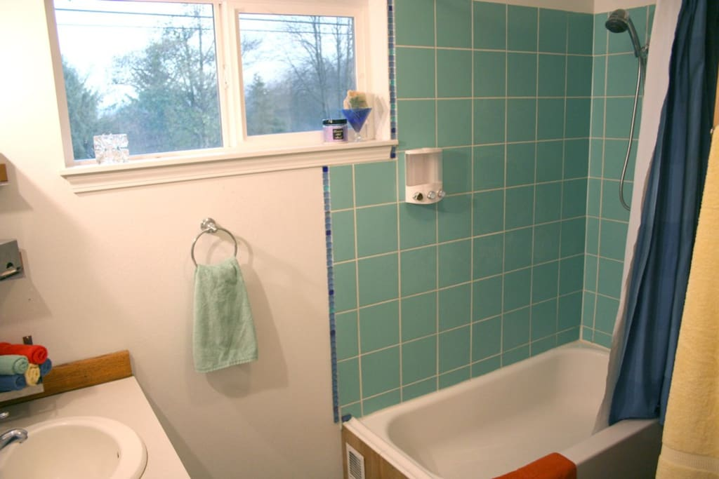 Bathroom with chlorine-filtered showerhead, soap/shampoo dispenser with quality products.
