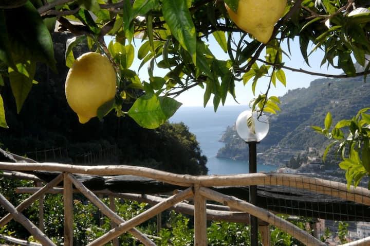 Casa  ORTENSIA vista mare sul sentiero dei limoni