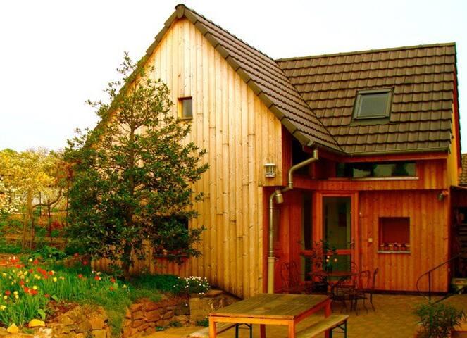 Gîte Obernai entre Strasbourg et Colmar