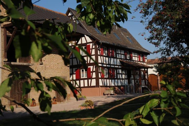 Maison d'hôtes Alsacienne Le petit Schelishans