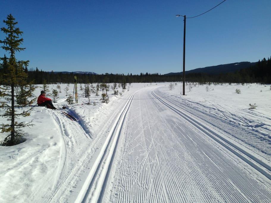 Fantastiske skiløyper i Lillehammerterreng.