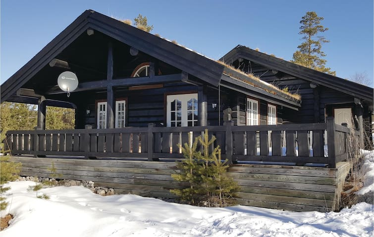 Holiday cottage with 3 bedrooms on 130 m² in Treungen