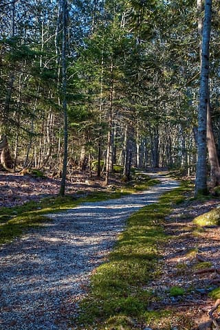 Walk down the trail to the meditation Center / Morgan Bay Zendo located on adjacent property
