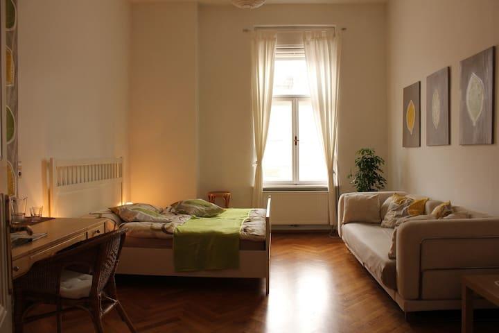Stilvolles WG-Zimmer im Zentrum - Graz - Apartmen