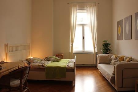 Stilvolles WG-Zimmer im Zentrum - Graz - Wohnung