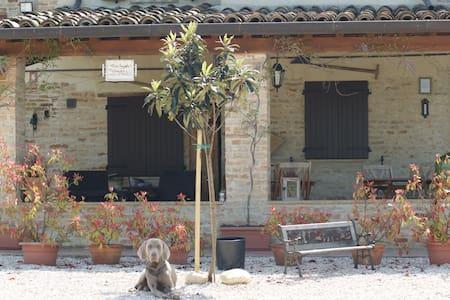 Casa Sorgente B & B - San Costanzo