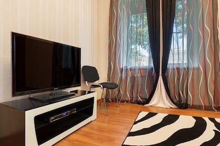 2к.  уютная квартира в Центре города - Rostov na Donu