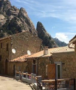 Un nid d'aigle en Corse