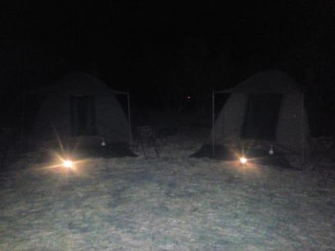 Tour Agent and Mobile Safaris