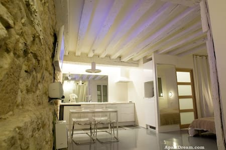 Center Paris Large Apartment Studio - Parigi - Appartamento