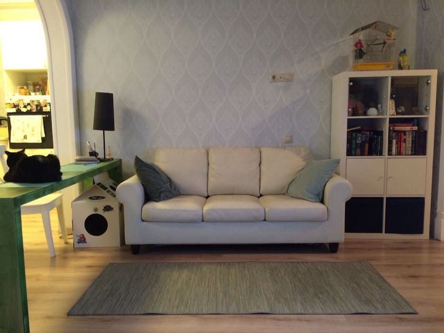 living room/гостиная