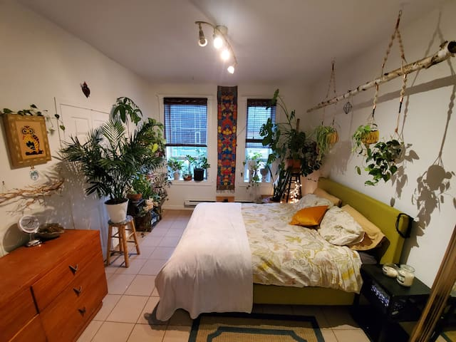 Little Italy's perfect one bedroom apartment