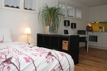 A modern studio, along with a social area - Sarmenstorf - Appartement