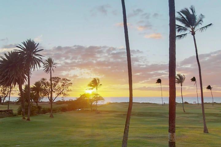 Ocean view condo w/ lanais, shared pool, grill, A/C - sunset views
