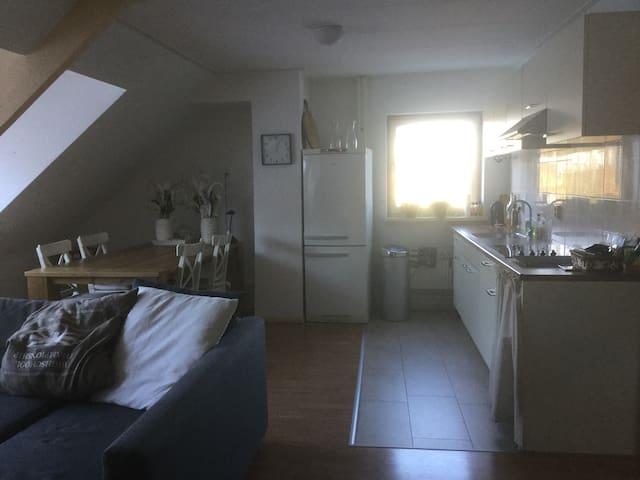 Rustig, mooi appartement in Beek - Beek-Ubbergen - Apartment