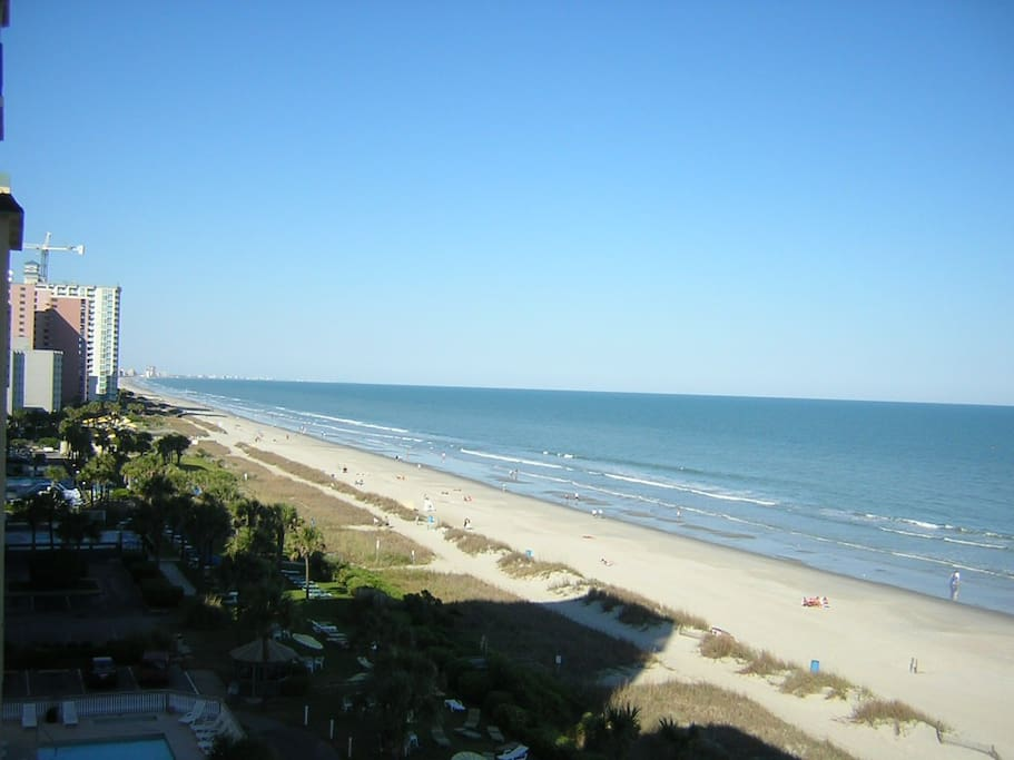 7 Th Floor Direct Ocean Front Downtown Location