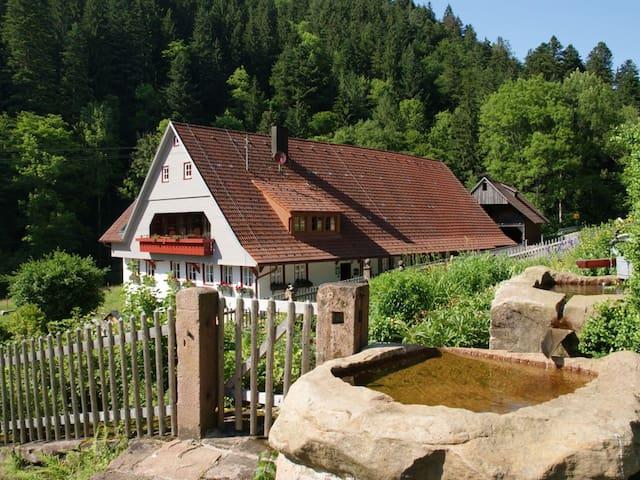 Hanselishof, (Schenkenzell), 4_Appartement im Hof, 36qm, max. 2 Personen