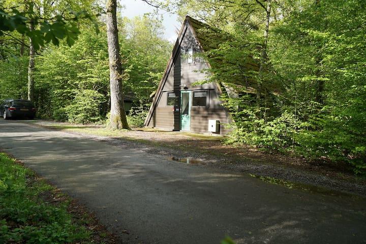 Mooi gerenoveerd huisje in de Ardennen!