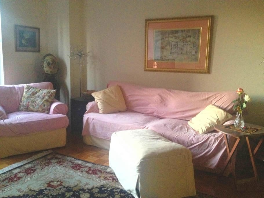 Living Room - Convertible Couch - Queen Size with good mattress