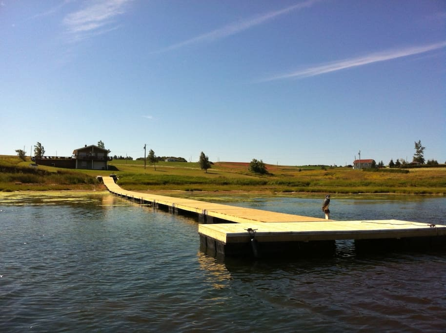 300+ ft dock allows you to be in deeper water for that am swim/kayak or to safely park jet skis or boats.